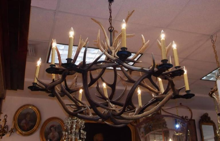 French antler and brass bobeche hanging chandelier circa 1870 for french twelve light hanging intertwined antler chandelier with brass bobeche candle cups chandelier was aloadofball Images