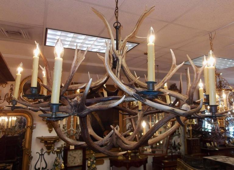 French antler and brass bobeche hanging chandelier circa 1870 at louis philippe french antler brass bobeche hanging chandelier circa 1870 for sale aloadofball Images