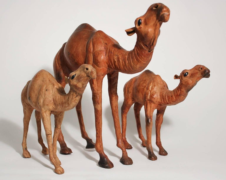 Very unique set of three Italian leather wrapped camel figurines. The outer surface is leather and all three have glass eyes. Detail is excellent. In nice shape with normal wear from age. 