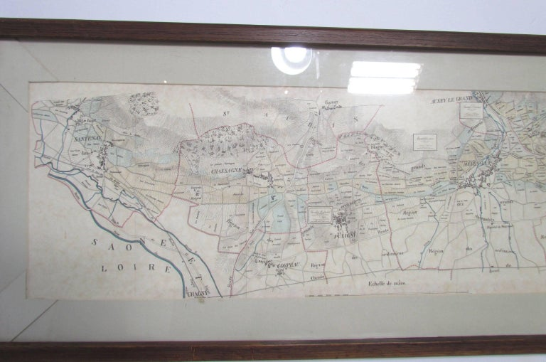 Other Panoramic Antique Lithographic Map for Louis Latour, Burgundy France Region For Sale