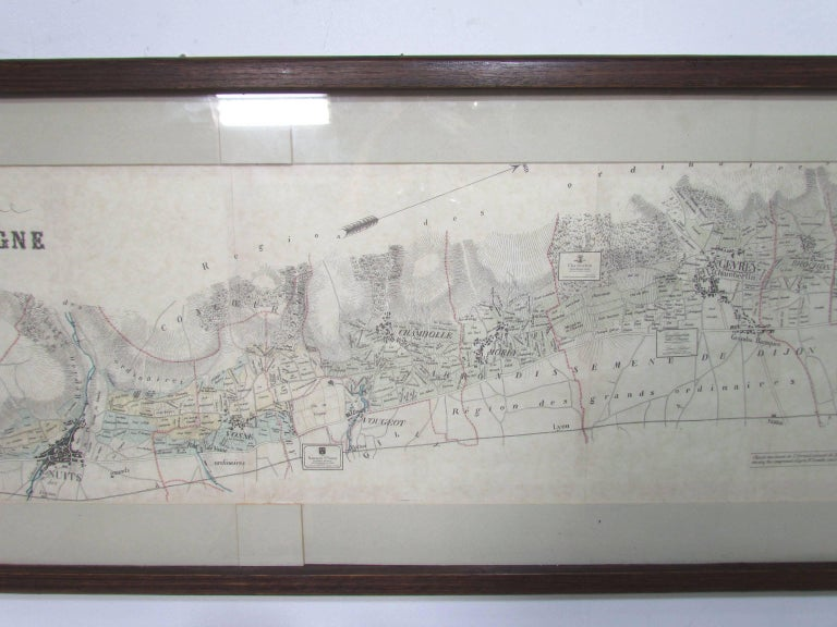 Paper Panoramic Antique Lithographic Map for Louis Latour, Burgundy France Region For Sale