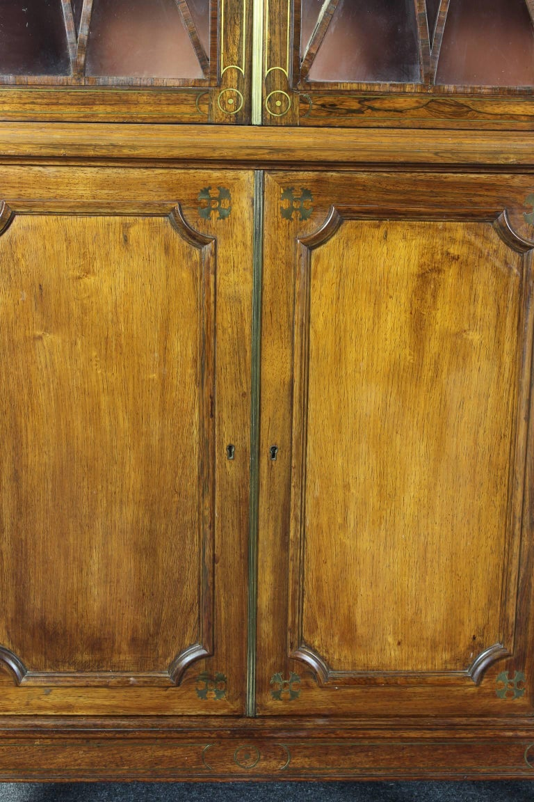 Pair of 19th Century Rosewood Bookcase Cabinets For Sale 3