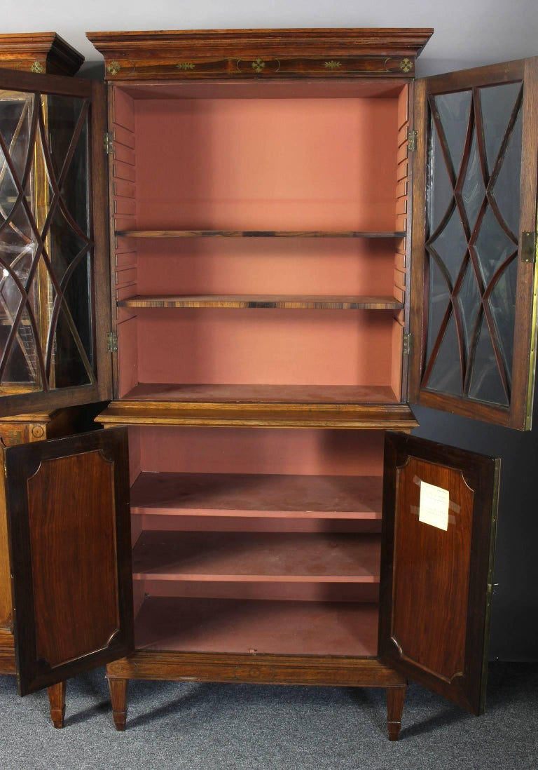 Pair of 19th Century Rosewood Bookcase Cabinets In Excellent Condition For Sale In Kilmarnock, VA