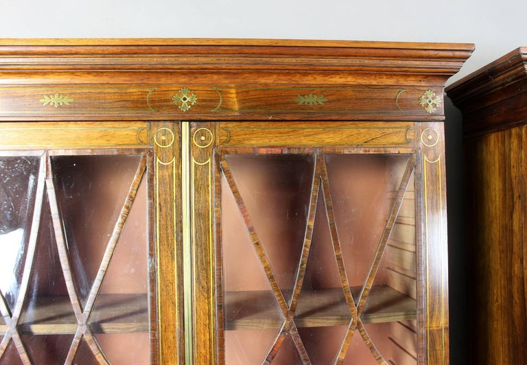 Pair of 19th Century Rosewood Bookcase Cabinets For Sale 1