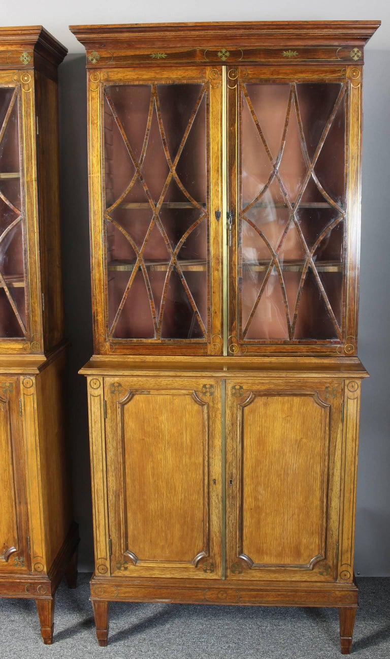 Regency Pair of 19th Century Rosewood Bookcase Cabinets For Sale