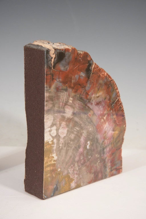 Pair Of Petrified Wood Bookends At 1stdibs