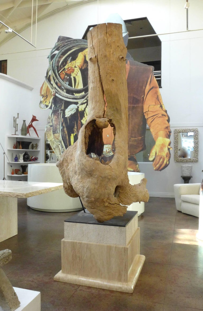 Monumental Mounted Tree Trunk Sculpture 3