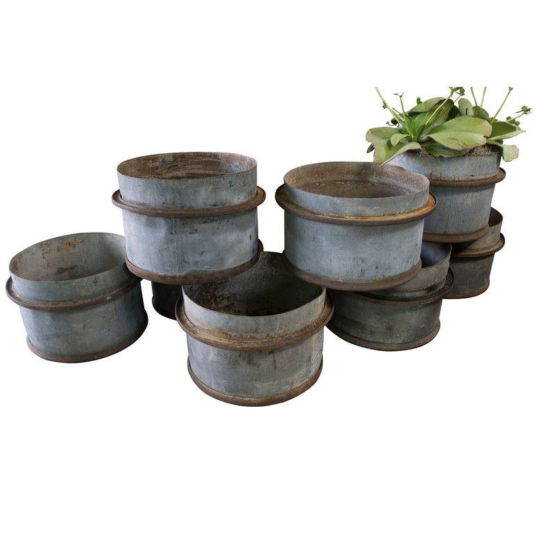 Rustic French Iron Planters, circa 1960 For Sale 2