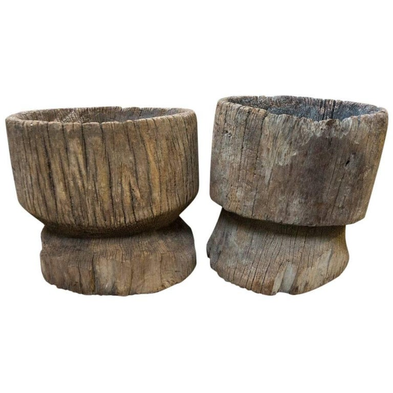wood tree stumps from india circa 1920 for sale - Tree Stumps For Sale