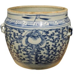 Antique Apothecary Bowls from 19th Century China