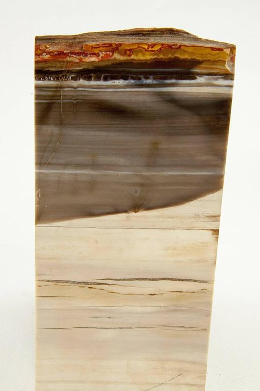 Malagasy Exceptional Pair of Petrified Wood Bookends For Sale