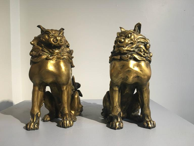 Cast Pair of Japanese Gilt Bronze Komainu by Ishikawa Komei, Meiji Period For Sale
