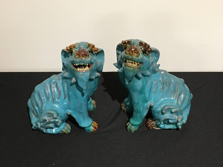 An absolutely delightful pair of Chinese turquoise glazed foo dogs, made for the export market. Portrayed seated on their haunches, heads raised, mouths in a wide grin, as if expecting treats. They have wonderful molded eyelashes above bulging