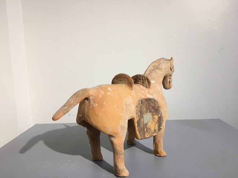 18th Century and Earlier Chinese Six Dynasties Pottery Model of an Armored Horse, 3rd-4th Century For Sale