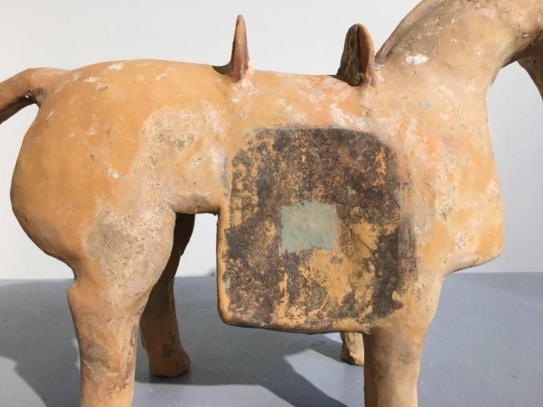 Chinese Six Dynasties Pottery Model of an Armored Horse, 3rd-4th Century For Sale 3