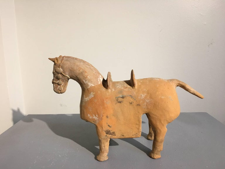 An extremely rare Chinese painted pottery model of an armored horse, Six Dynasties period (220-581 AD), TL tested by Oxford Authentication.  The stocky war horse portrayed standing four square, fully bridled, and with a armored blanket and saddle.