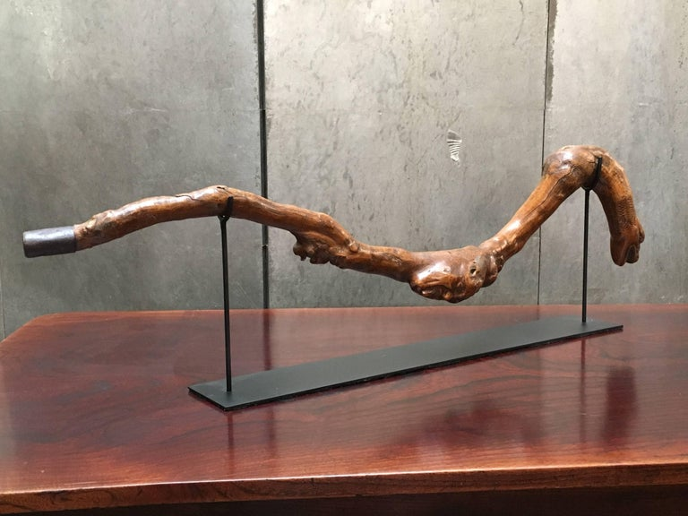 Hand-Carved American Folk Art Snake and Wood Spirits Walking Stick, Early 20th Century For Sale