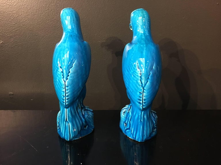Porcelain Late 19th Century Pair of Chinese Export Turquoise Glazed Models of Hawks For Sale