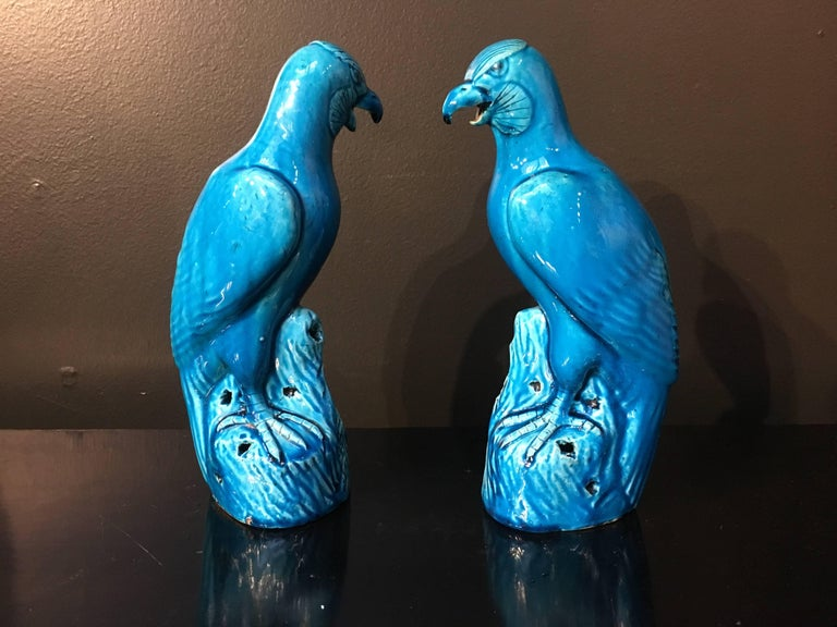 Late 19th Century Pair of Chinese Export Turquoise Glazed Models of Hawks For Sale 1