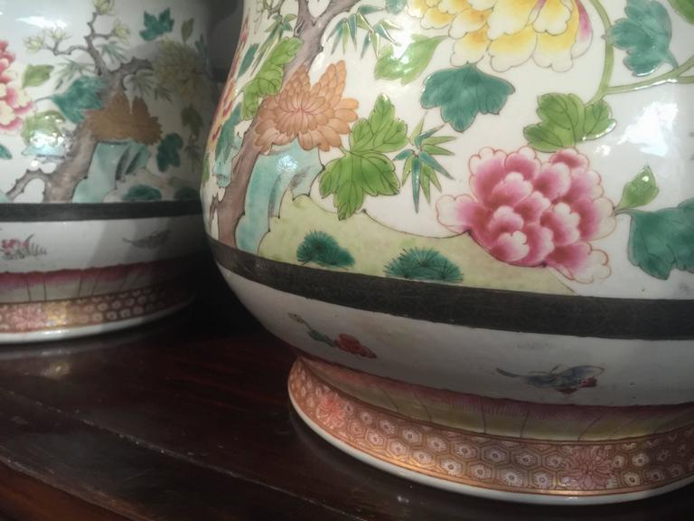 Enameled Pair of Chinese Famille Rose Cachepots For Sale