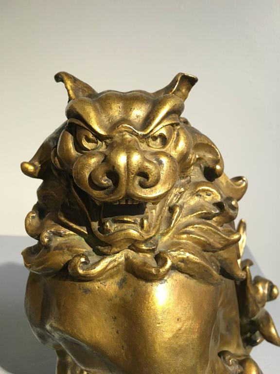 Pair of Japanese Gilt Bronze Komainu by Ishikawa Komei, Meiji Period For Sale 5