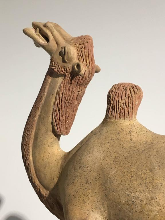 Chinese Tang Dynasty Painted Pottery Model of a Camel 8