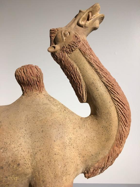 Chinese Tang Dynasty Painted Pottery Model of a Camel 7