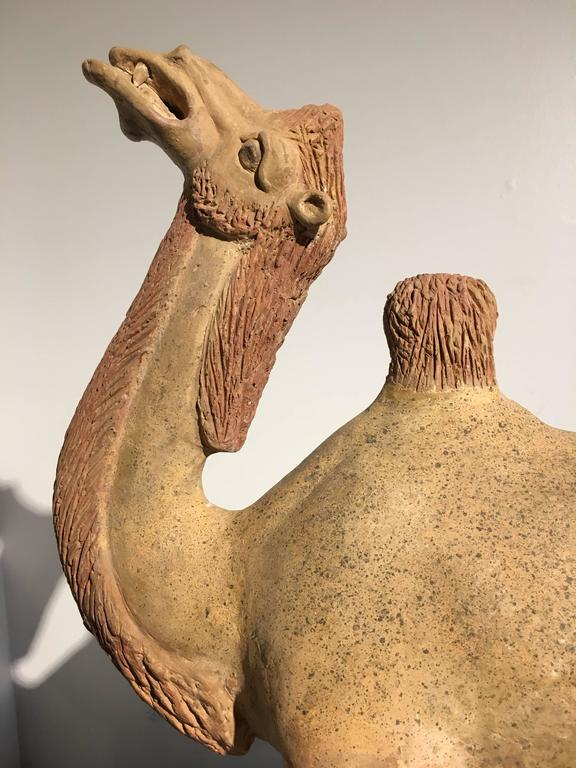Chinese Tang Dynasty Painted Pottery Model of a Camel 6