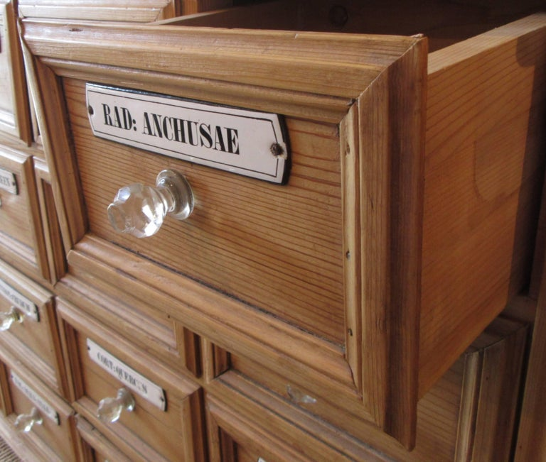Unknown Pine Apothecary Cupboard with Enamel Labelled Drawers For Sale