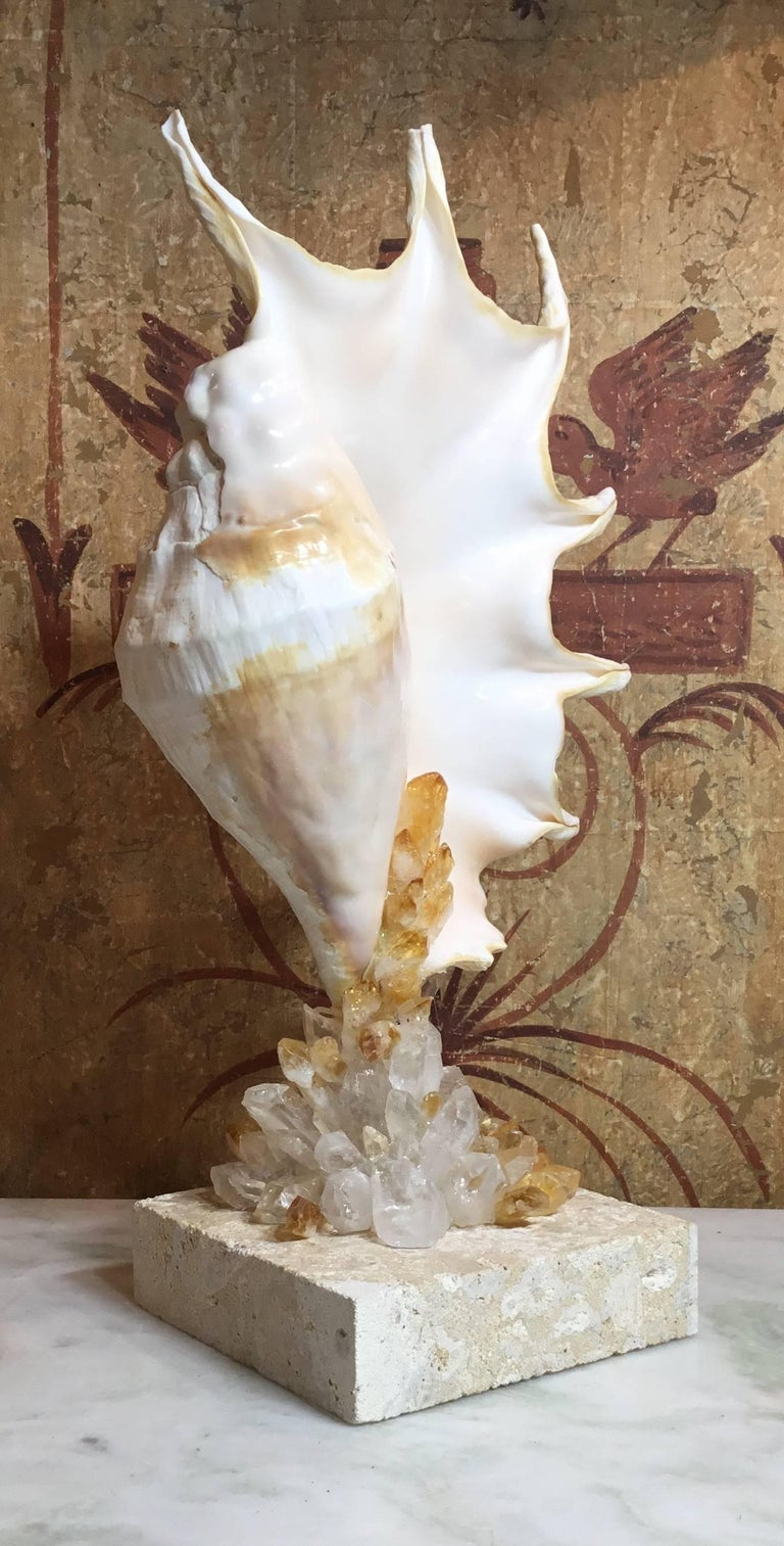 Contemporary One of a Kind Seashell and Crystal Quartz Citrine For Sale