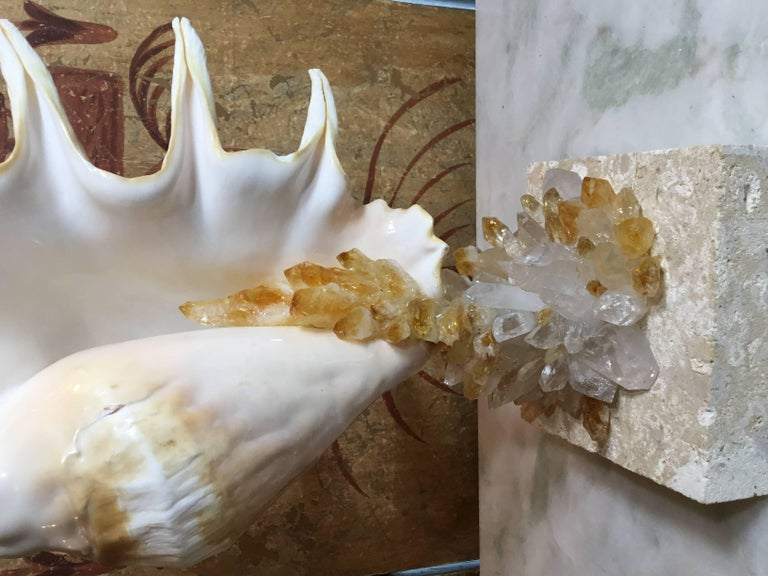 One of a Kind Seashell and Crystal Quartz Citrine For Sale 2