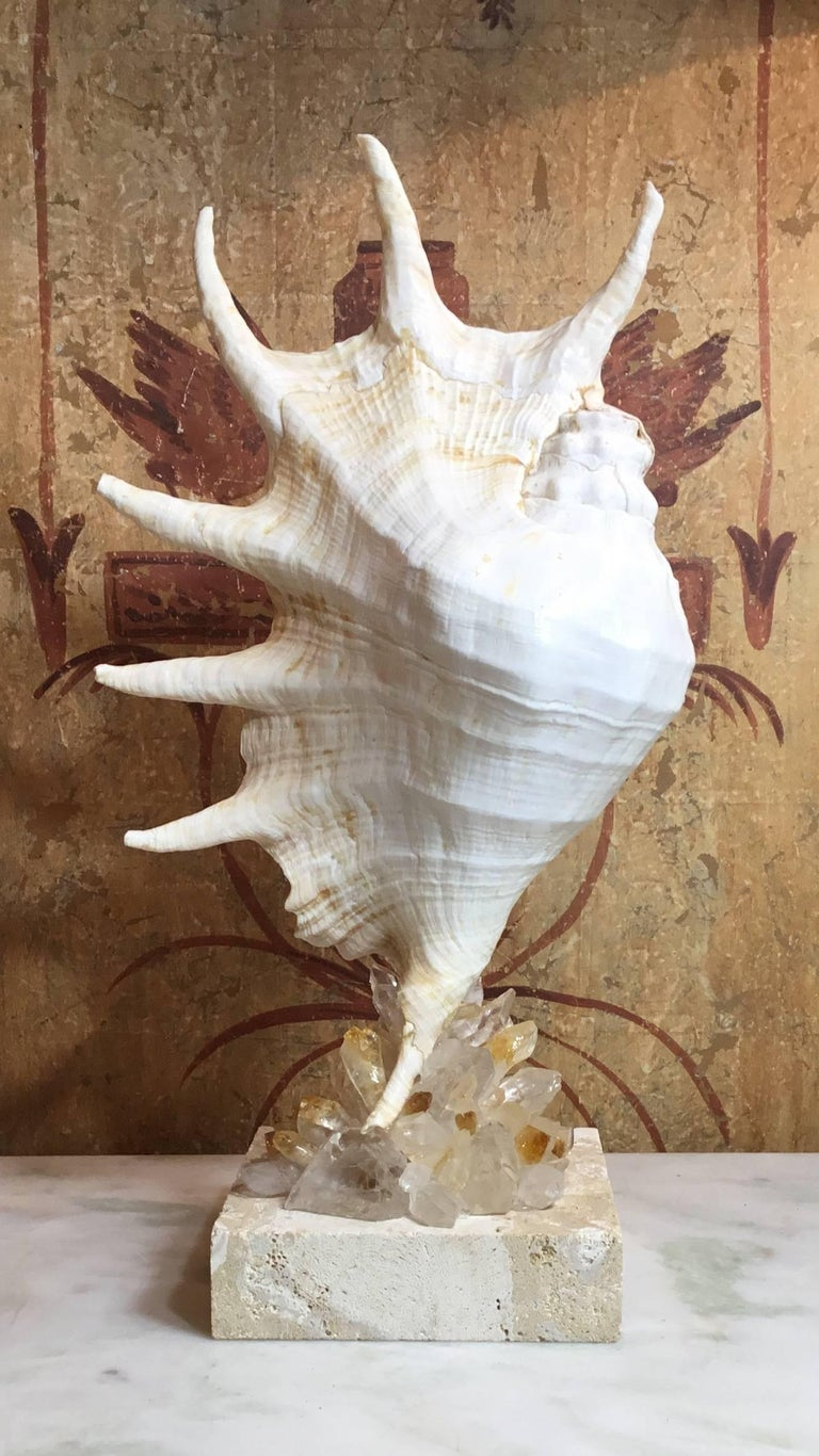 One of a Kind Seashell and Crystal Quartz Citrine For Sale 5