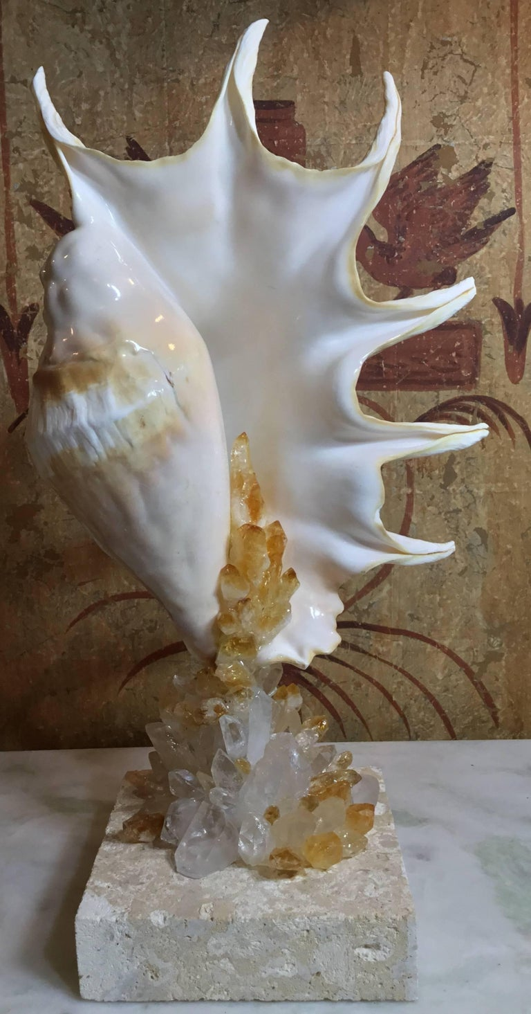 One of a Kind Seashell and Crystal Quartz Citrine For Sale 9