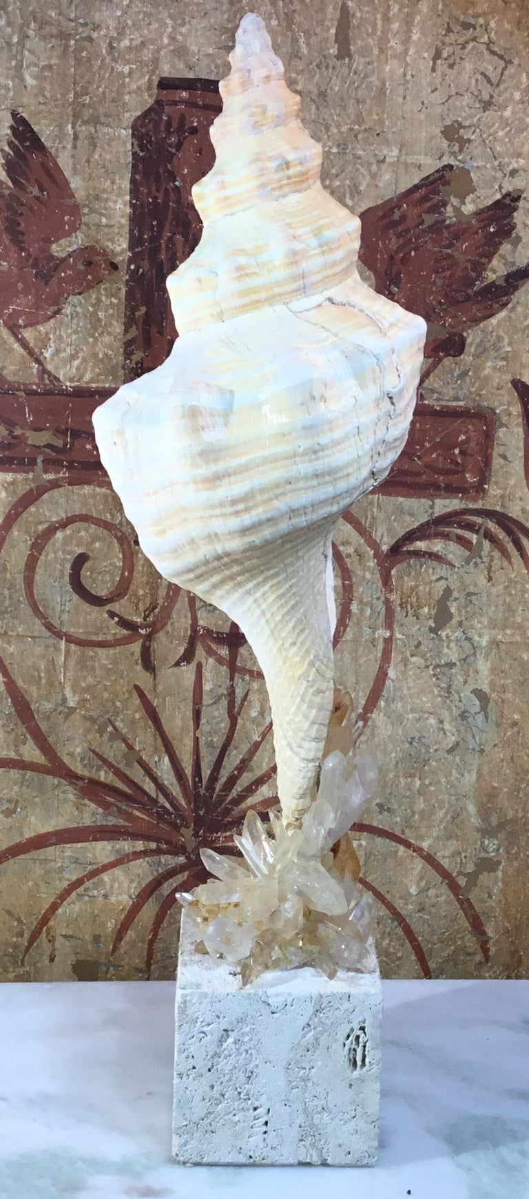 Atlantic Sea Shell and Crystal Quartz In Excellent Condition For Sale In Delray Beach, FL