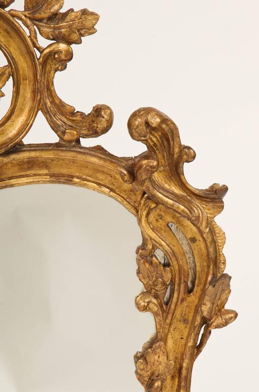 French Fine Louis XV Rococo Mirror For Sale