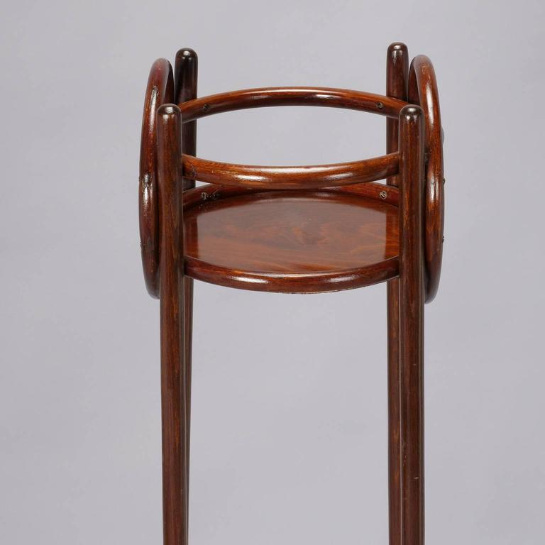Thonet Art Nouveau Bentwood Plant Stand In Good Condition For Sale In Troy, MI