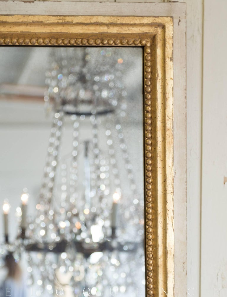 Contemporary Eloquence® Grande Eugenie Panel Mirror in Toasted Almond and Gold For Sale