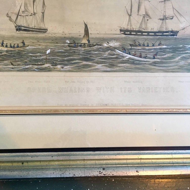Hand-Painted 19th Century Colored Lithograph of Sperm Whaling with Its Varieties, 1870 For Sale