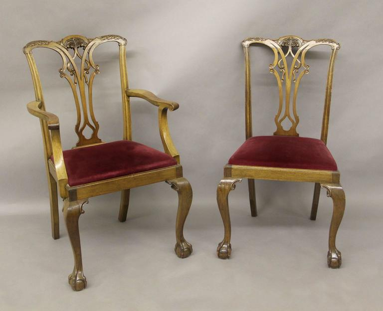A set of eight late 19th-early 20th century Chippendale style dining chairs.  Comprising of two arm and six side chairs, ball and claw feet.  Armchairs: Height: 39 inches/99 cm. Width: 23.5 inches/60 cm. Depth: 19 inches/48 cm.  Side
