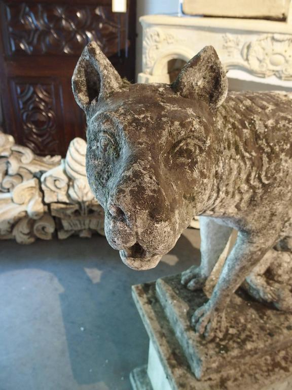 Antique Capitoline Wolf of Rome, Carved Pietra Di Vicenza Stone, circa 1910 9
