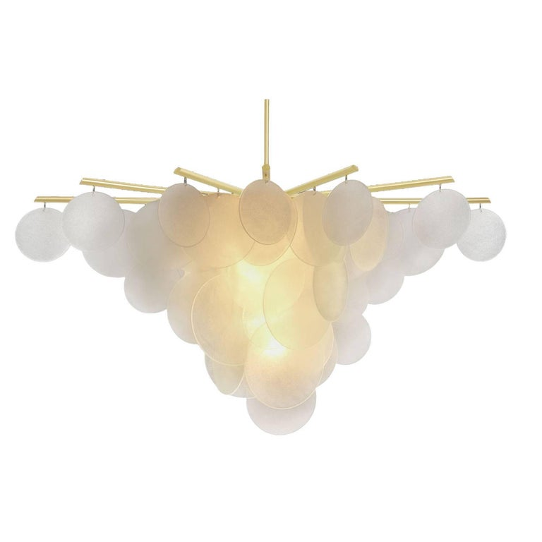 Nimbus Chandelier Light For Sale