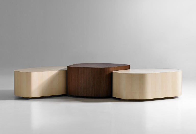 Clue is a collection of organic-shaped tables with fully enclosed sides that may be used individually or grouped together to form configurations. The table is available in two heights with maple or walnut veneers. There are 4 varying modules and