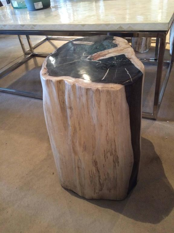 Indonesian Petrified Wood Side Table or Table Base For Sale