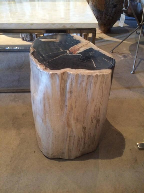 Petrified Wood Side Table or Table Base In Good Condition For Sale In Los Angeles, CA