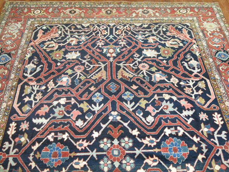 Antique Persian Serapi Rug For Sale 3