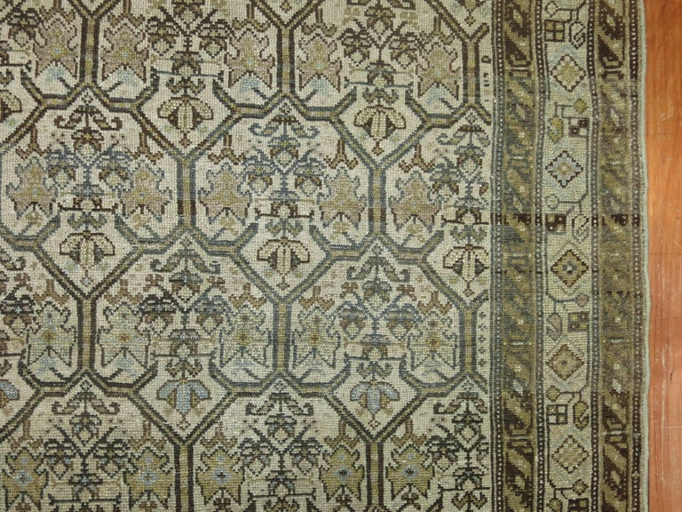 Persian Malayer Earth Tone Runner 7
