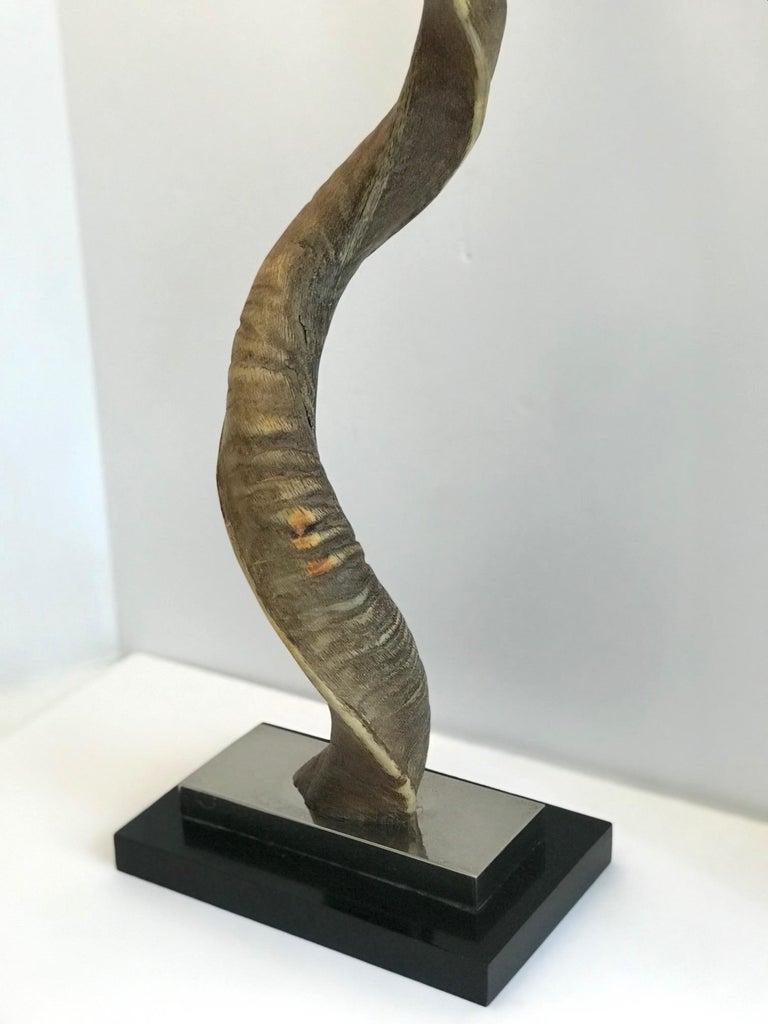 Vintage African Kudu Horn Sculpture on Stand For Sale 3