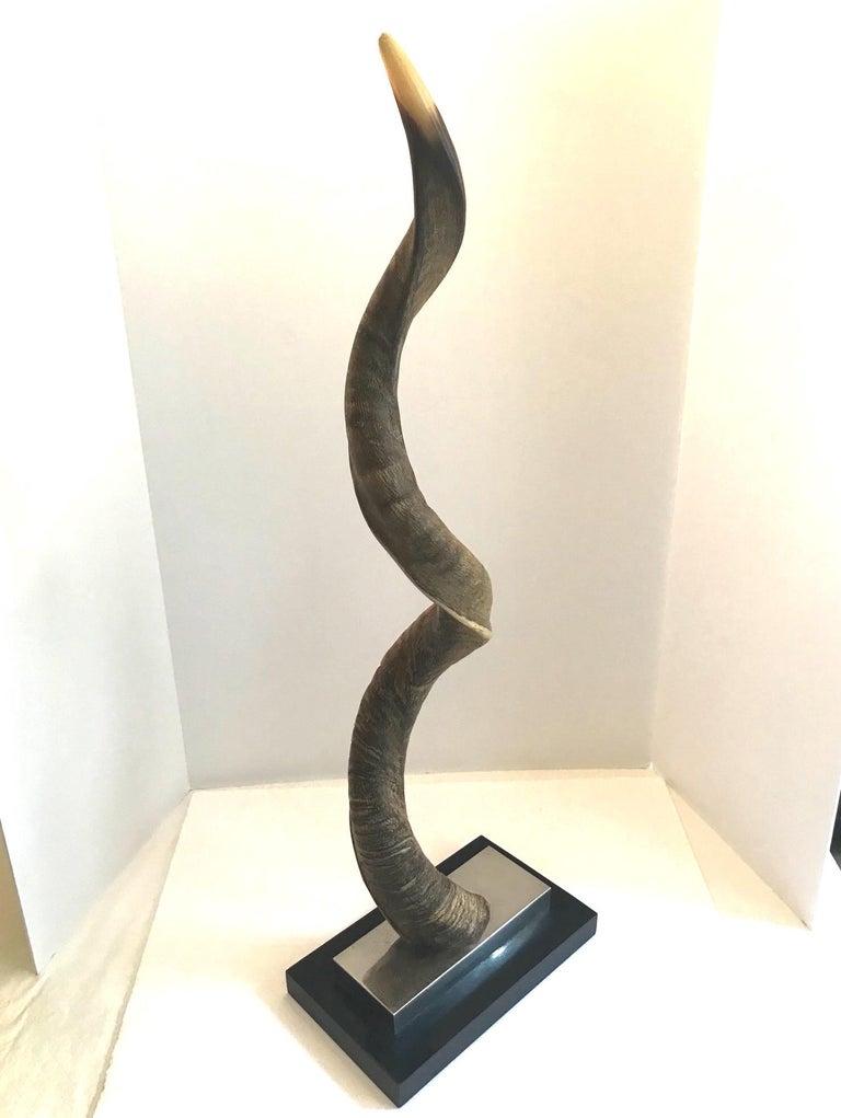 Vintage African Kudu Horn Sculpture on Stand For Sale 10