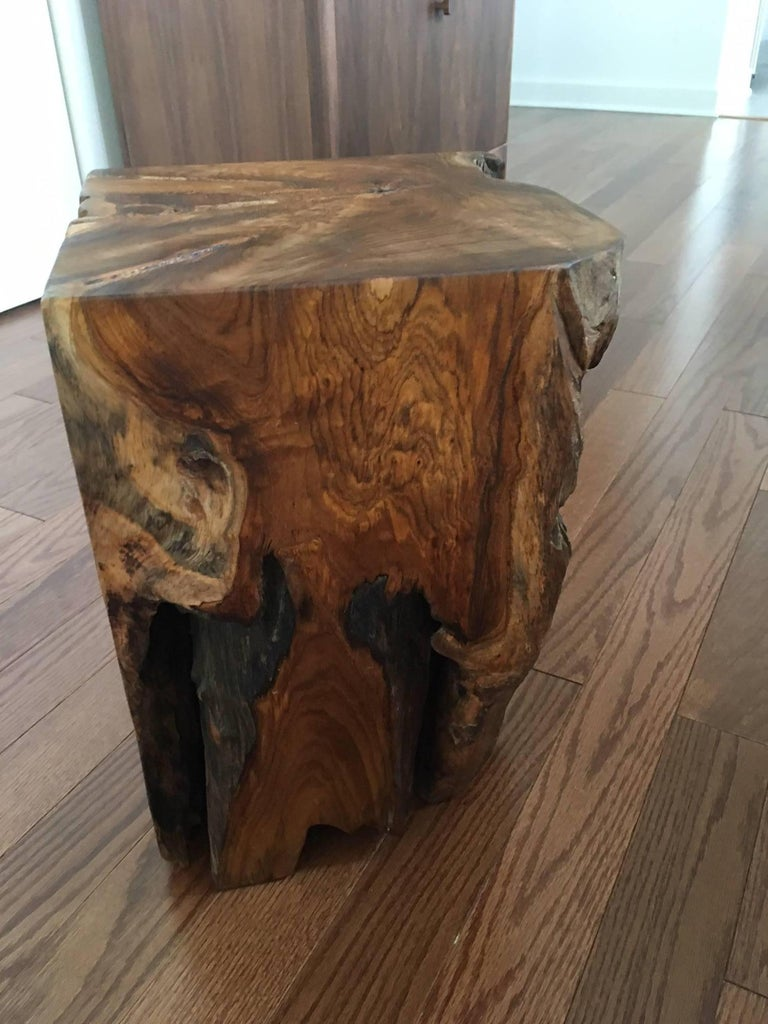 Organic Modern Indonesian Teak Wood Stool and Side Table For Sale 2