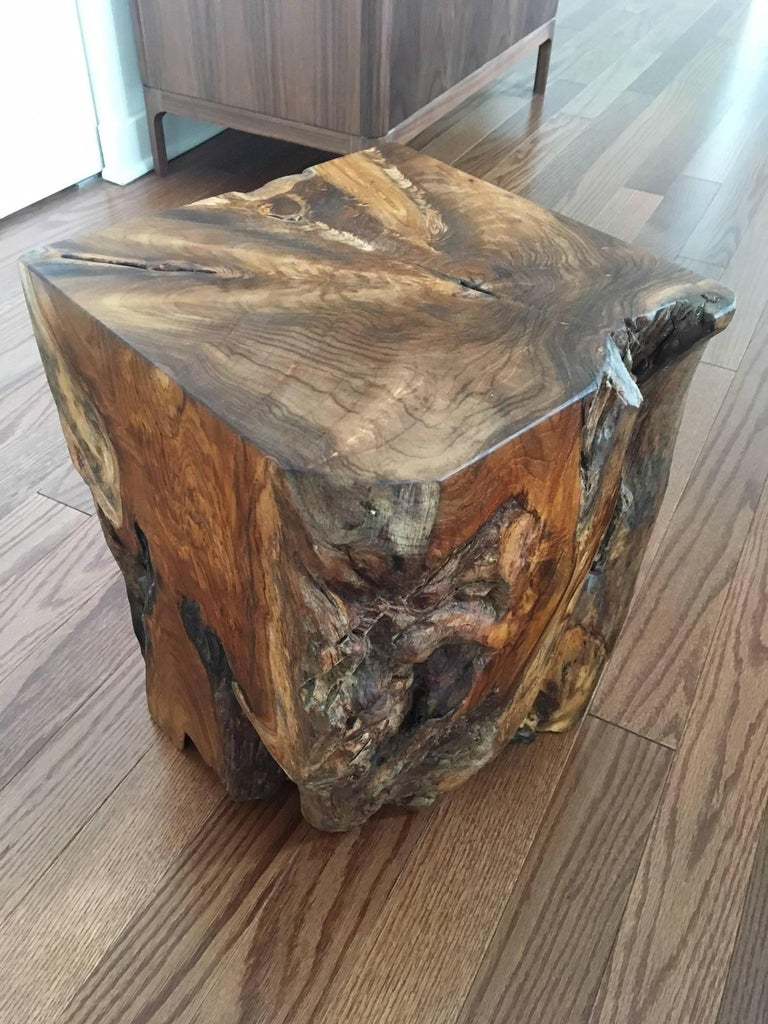 Organic Modern Indonesian Teak Wood Stool and Side Table For Sale 6